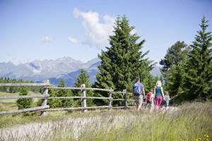 Wanderung in der Almenregion